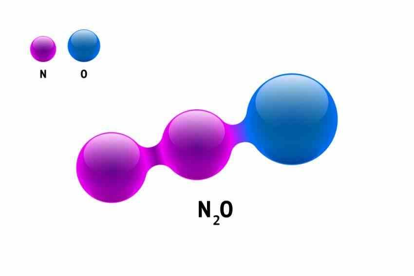 Quá trình tạo ra khí cười N2O